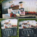Our A5 leaflet designs for shaken udders strawberries and cream milkshake